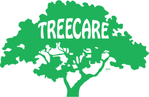 Treecare Inc. Provides Tree Removal, Tree Trimming, Stump Removal, and Other Tree Services in Hennepin County, Minnesota